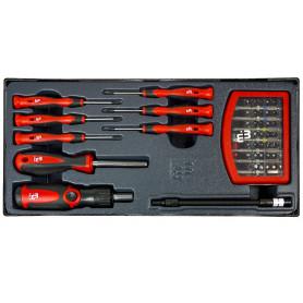 Embouts et tournevis de précision MW-Tools MWS65P